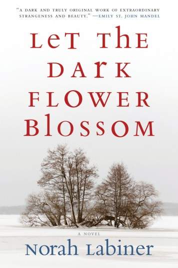 Book Review: Let the Dark Flower Blossom by Norah Labiner